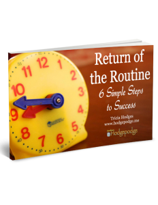 return-of-the-routine