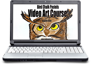 Bird Video Art Course