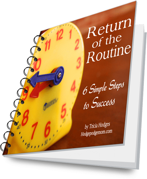 Return of the Routine is six simple steps for getting back into a routine any time of year. Tried and true homeschool habits.