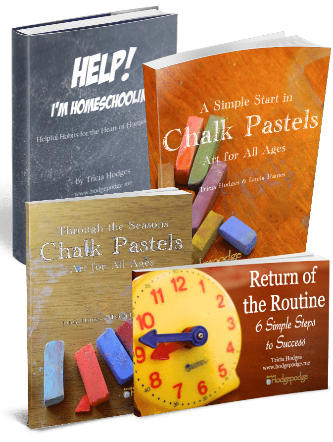 Help for Homeschool Bundle