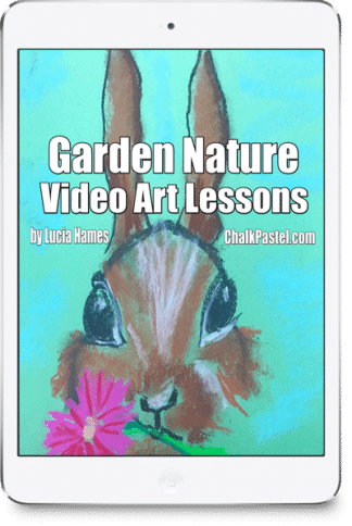 Nana's video art lessons capture the beauty of a garden! No expensive, intimidating list of art supplies. Garden Nature Video Art Lessons are a wonderful stand alone art curriculum or a perfect complement to your nature study learning.