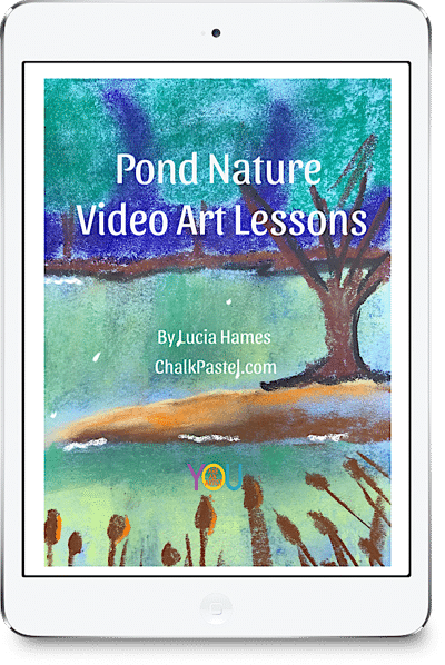 Pond Nature Video Art Lessons