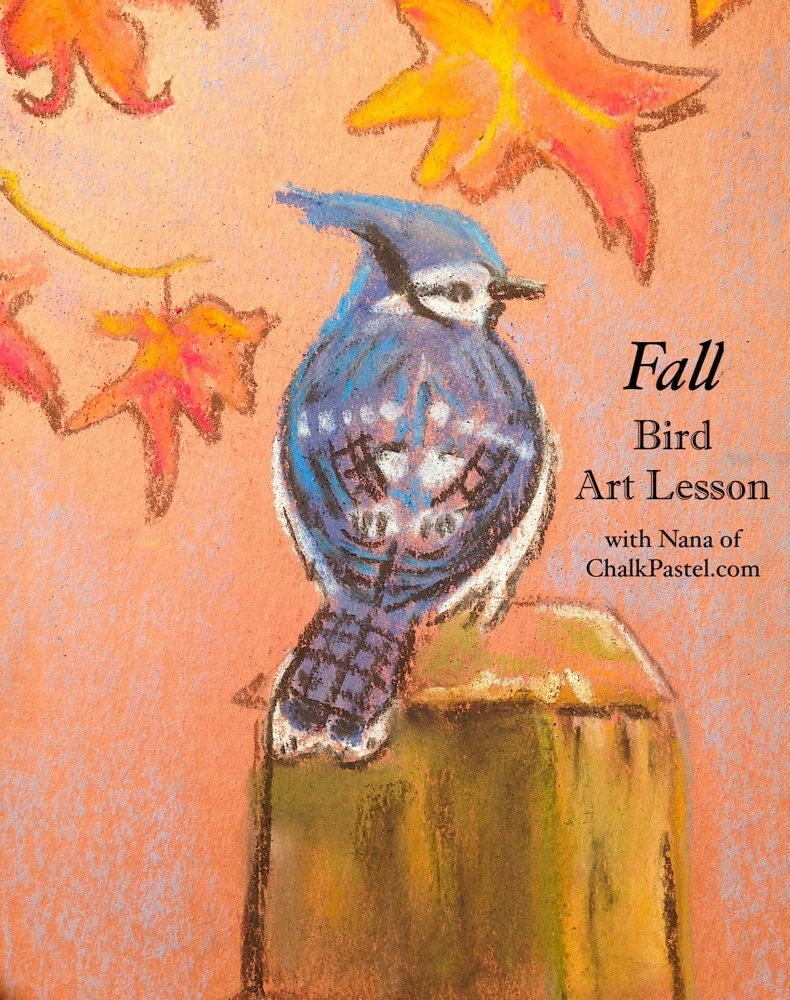 Your resident ornithologist will love Nana's chalk pastel bird video art lessons! In fact, there are so many ways to combine a homeschool bird study with art. Maybe a seasonal study, the Great Backyard Bird Count, Apologia's Flying Creatures, nature study and more. You can have an I Drew It Then I Knew It homeschool bird study.