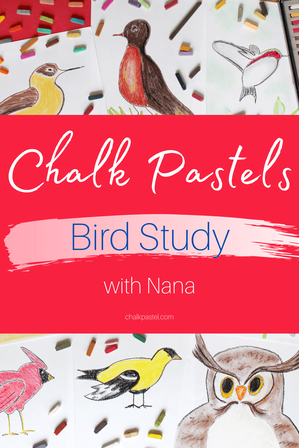 Chalk Pastels Bird Study with Nana: A chalk pastels bird study with Nana is a wonderful way to introduce bird art lessons to your kids. Chalk pastels are perfect for preschoolers to adults. They are super easy to use with no long art supply list needed. You'll love adding these vibrant birds to your next nature study or in preparation for the Great Backyard Bird Count! #chalkpastels #YouAREAnArtist #birdartlessons #birdartlessonsforkids #birdnaturestudy #backyardbirds #birdlessons #ChalkPastelsBirdStudywithNana