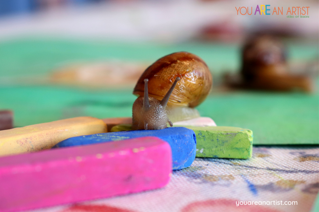Snail Unit Study by Jamie Gault is a perfect example of integrated art for your homeschool.